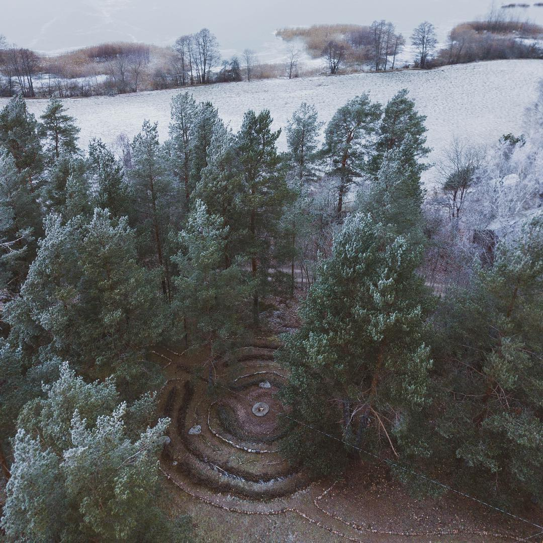 Cova collective. Polku in winter
